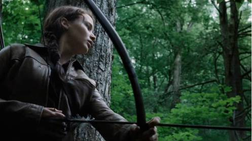 687883034_1768085723001_the-hunger-games-unseen