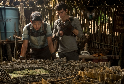 THE MAZE RUNNER Minho (Ki Hong Lee, left) and Thomas (Dylan O'Brien, right) devise an escape plan. Ph: Ben Rothstein TM and © 2014 Twentieth Century Fox Film Corporation.  All Rights Reserved.  Not for sale or duplication.